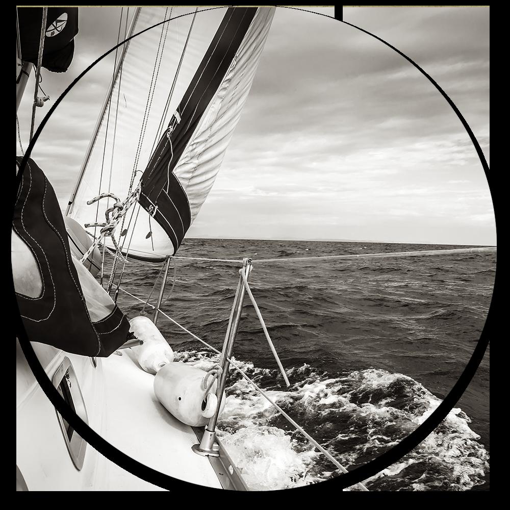 Thrive Sail